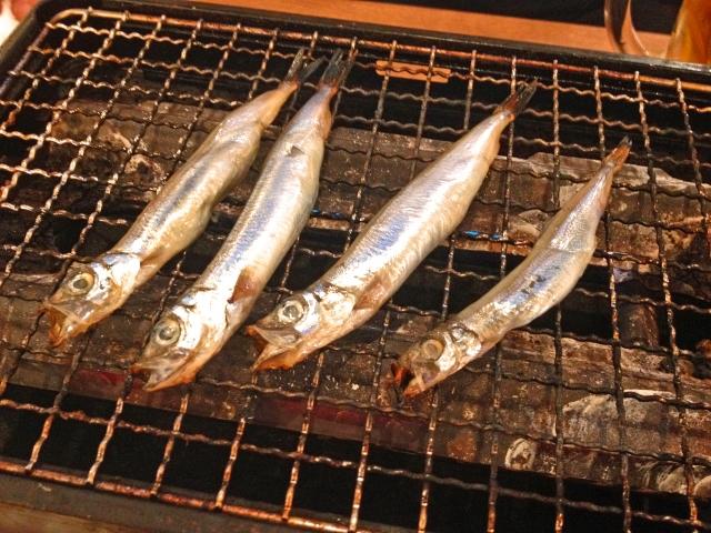 fish_singular_plural